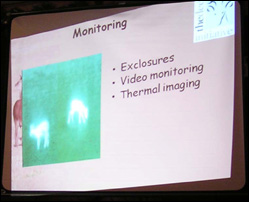 Thermal imaging is used to monitor deer in their environment